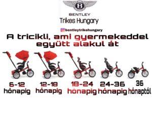 0608F5C8 A2BC 4CC3 A22E B2328BA2321A 300x242 Prémium Kategóriás Bentley Trike 6 az 1 ben Babakocsi Átalakítható Tricikli Barna