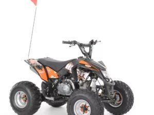 hecht-54125-black-benzinmotoros-quad-125-ccm-2